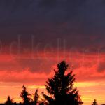 schwarz rot gold himmel2