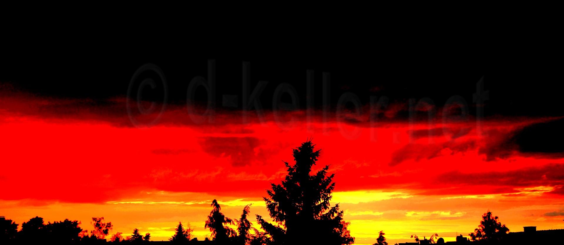 Schwarzrotgoldhimmel-large